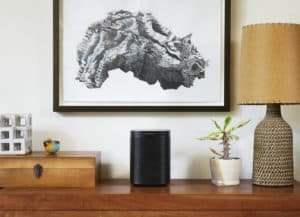 A black Sonos One (Gen 2) sitting on a desk, with a picture above it and a plant to its right.