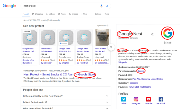 A Google search for 'Nest Protect'