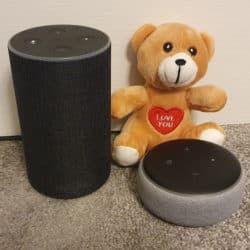Two Echo devices (a full size Echo and an Echo Dot), along with a 'Love You' baby bear.