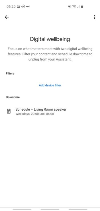 Phone screenshot showing the downtime summary page within the Google Home app.
