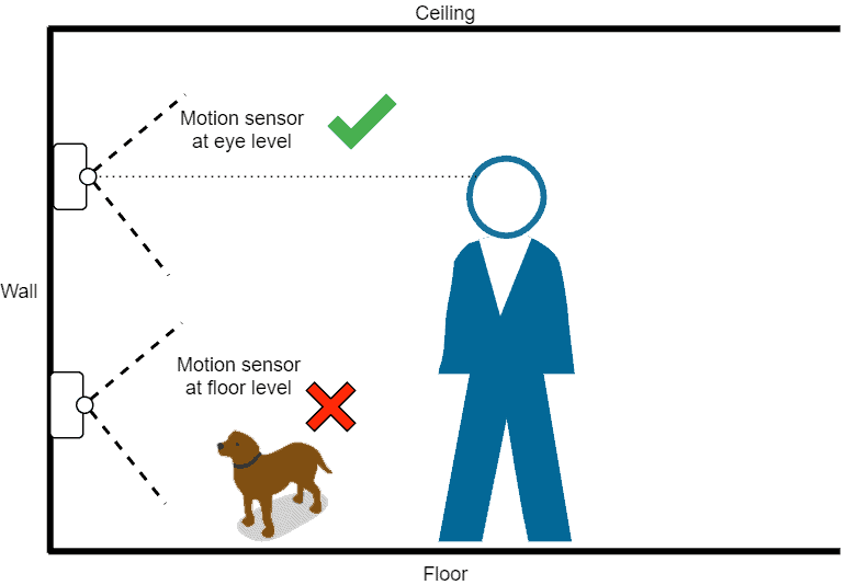 Diagram showing best Philips Hue motion sensor placement to avoid pets