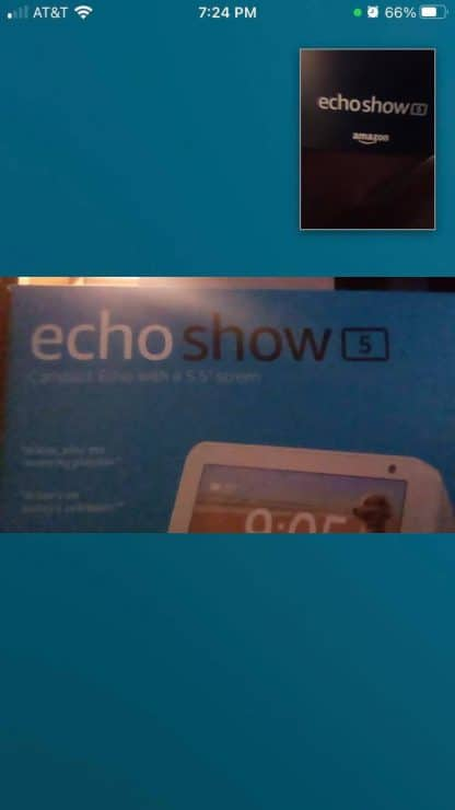 Echo Show example video call output